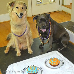 birthday pups