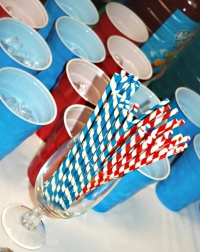 thing 1 party cups
