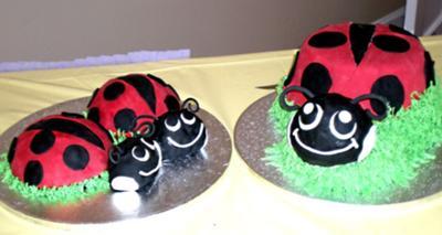 Ladybug Cakes!