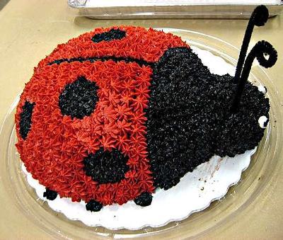 Ladybug Cake!
